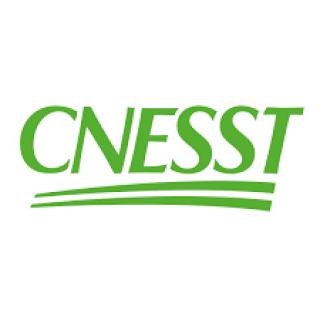 La CNESST publie un guide de normes sanitaires en milieu de travail pour les activités de loisir, de sport et de plein air en vue d'une reprise graduelle en toute sécurité