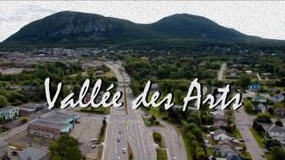Vallée des arts de la semaine du 13 juillet 2020