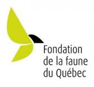 Le Programme Hydro-Québec verse près de 500 000 $ pour des projets de mise en valeur des milieux naturels